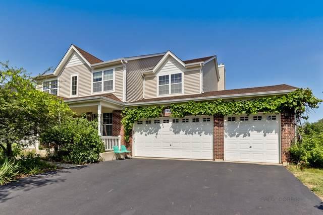 2358 Bluewater Drive, Wauconda, IL 60084 (MLS #10667993) :: Helen Oliveri Real Estate