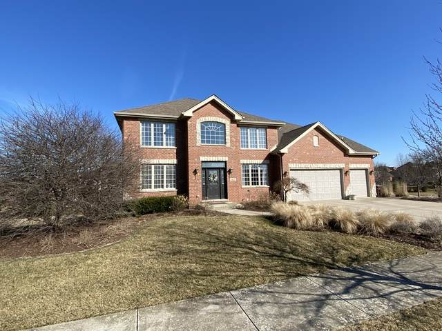 19417 Beaver Creek Lane, Mokena, IL 60448 (MLS #10668419) :: Century 21 Affiliated
