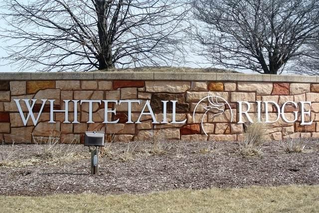 5537 Whitetail Ridge Drive - Photo 1