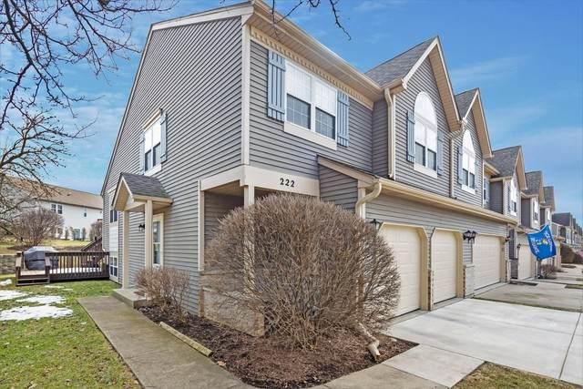 222 Dunridge Circle #0, East Dundee, IL 60118 (MLS #10668954) :: Knott's Real Estate Team