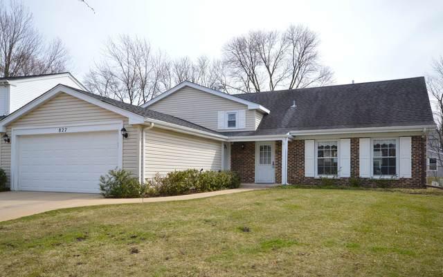 827 Lehigh Lane, Buffalo Grove, IL 60089 (MLS #10668976) :: Property Consultants Realty
