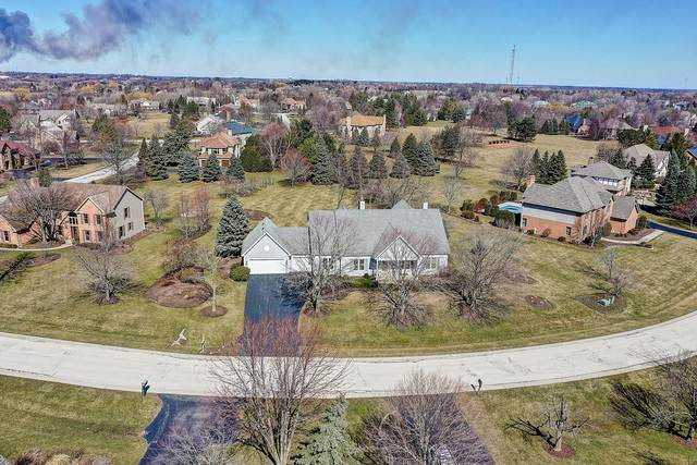 48 Copperfield Drive, Hawthorn Woods, IL 60047 (MLS #10669201) :: Helen Oliveri Real Estate