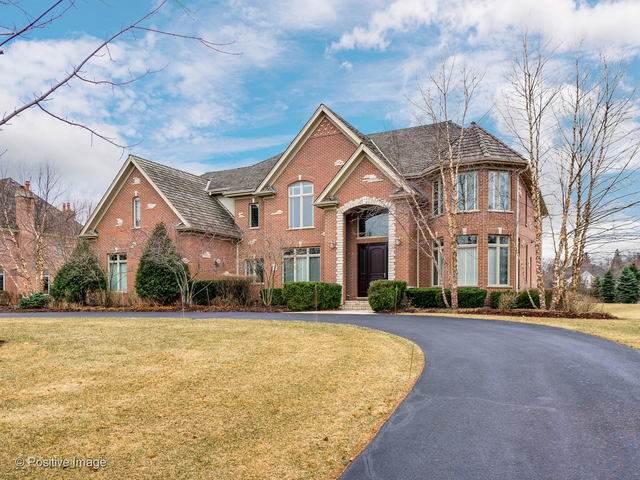 1405 W Newcastle Court, Inverness, IL 60010 (MLS #10669253) :: Ani Real Estate