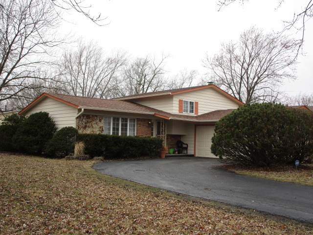22510 Arquilla Drive, Richton Park, IL 60471 (MLS #10669293) :: Property Consultants Realty