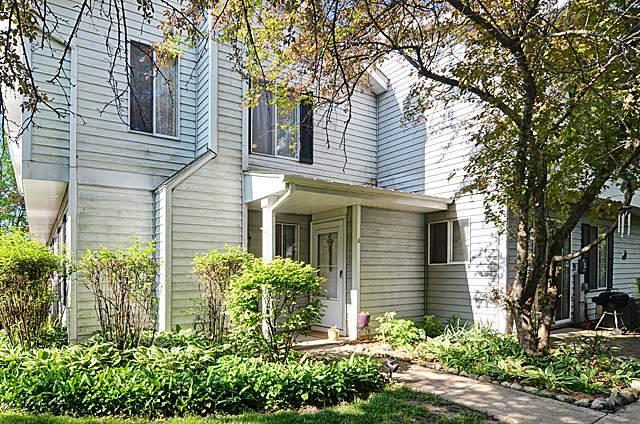 2462 Brunswick Circle A, Woodridge, IL 60517 (MLS #10669301) :: Property Consultants Realty