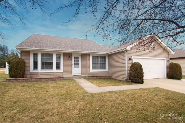 198 S Driftwood Trail, Mchenry, IL 60050 (MLS #10669745) :: Ryan Dallas Real Estate
