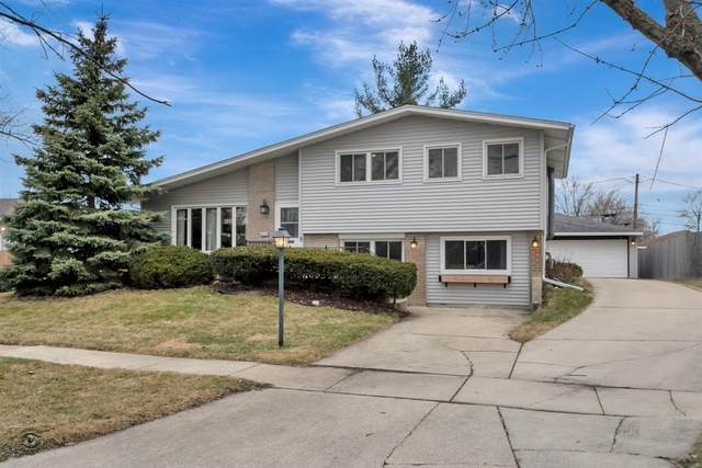 5730 Vine Street, Oak Forest, IL 60452 (MLS #10669756) :: Century 21 Affiliated