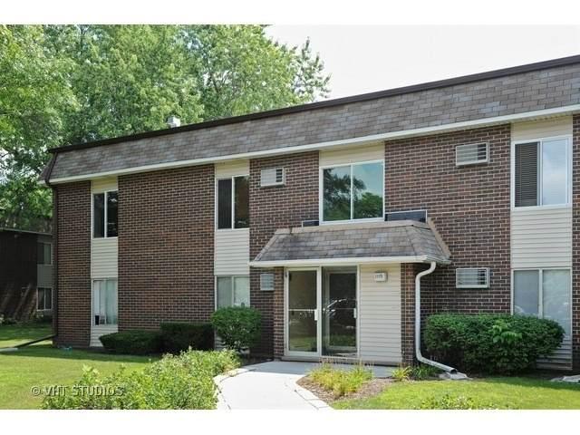 1115 Miller Lane E #202, Buffalo Grove, IL 60089 (MLS #10670523) :: Property Consultants Realty