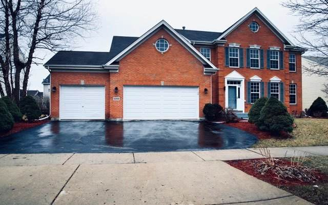 5255 Shotkoski Drive, Hoffman Estates, IL 60192 (MLS #10670553) :: The Spaniak Team