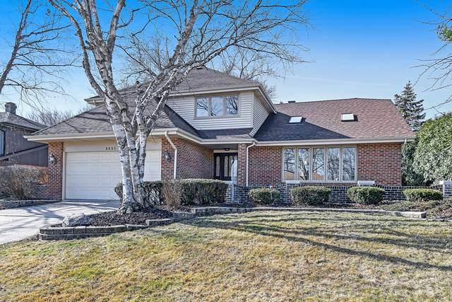 1615 Lakeview Drive, Darien, IL 60561 (MLS #10670666) :: John Lyons Real Estate