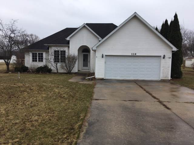 114 Prairie Drive, Essex, IL 60935 (MLS #10670699) :: Property Consultants Realty
