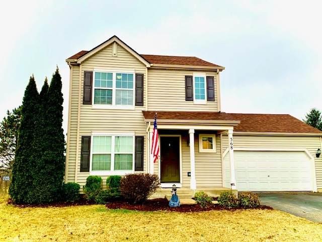 368 Coneflower Drive, Minooka, IL 60447 (MLS #10671015) :: Littlefield Group