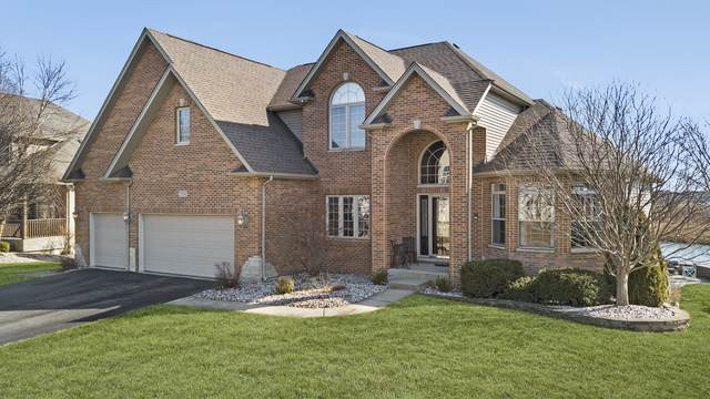 25504 W Rock Drive, Plainfield, IL 60586 (MLS #10671537) :: Property Consultants Realty