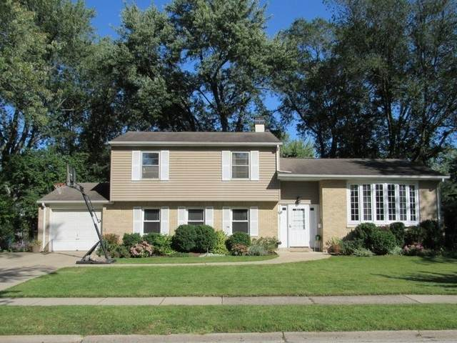 251 N Richards Drive, Palatine, IL 60074 (MLS #10671761) :: Jacqui Miller Homes