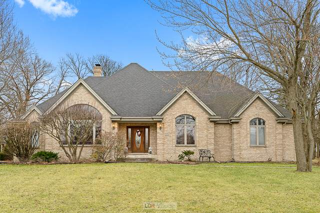 560 Belfast Terrace, Crete, IL 60417 (MLS #10672399) :: Property Consultants Realty