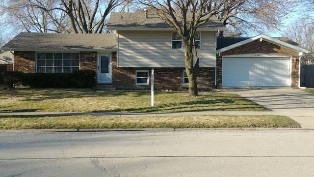 113 Heritage Drive, Minooka, IL 60447 (MLS #10672456) :: Littlefield Group