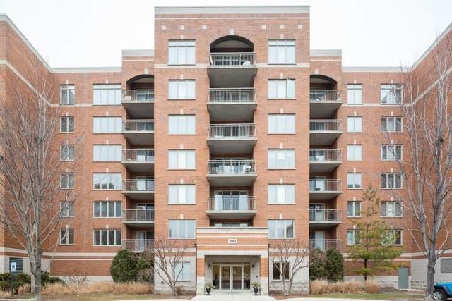 390 S Western Avenue #508, Des Plaines, IL 60016 (MLS #10672745) :: John Lyons Real Estate