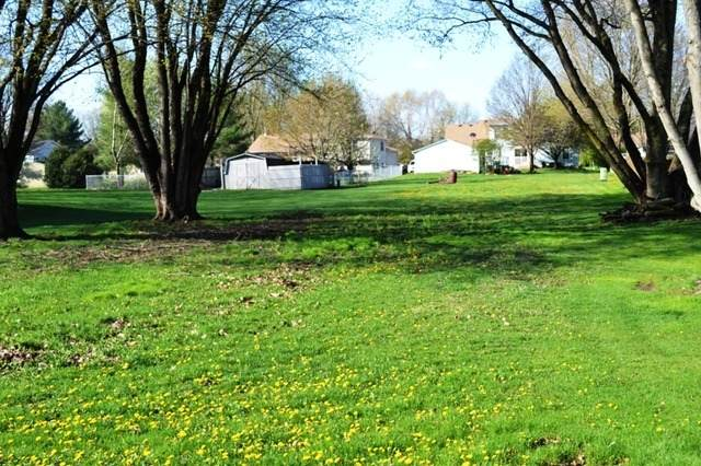 1435 Sandwich Drive, Lake Holiday, IL 60548 (MLS #10672810) :: Suburban Life Realty