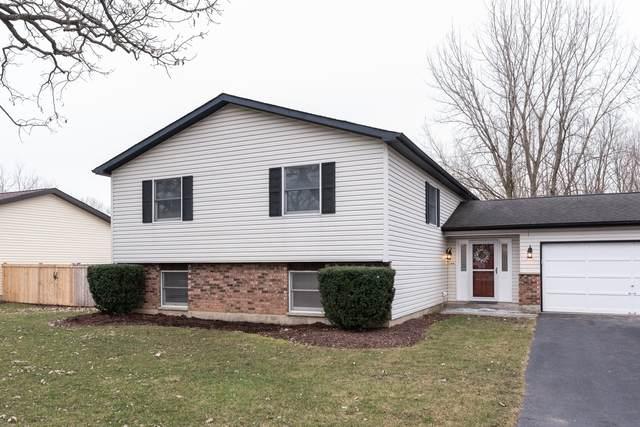 9513 Ballard Road, Crystal Lake, IL 60014 (MLS #10672962) :: Angela Walker Homes Real Estate Group