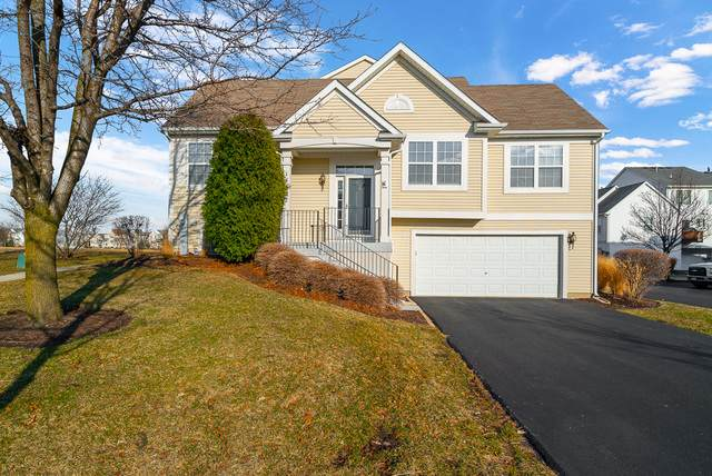 14622 Patriot Square Drive, Plainfield, IL 60544 (MLS #10673065) :: Jacqui Miller Homes