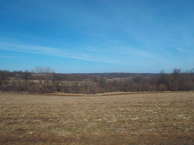 TBD Polsgrove Road, Mt. Carroll, IL 61053 (MLS #10673305) :: BN Homes Group