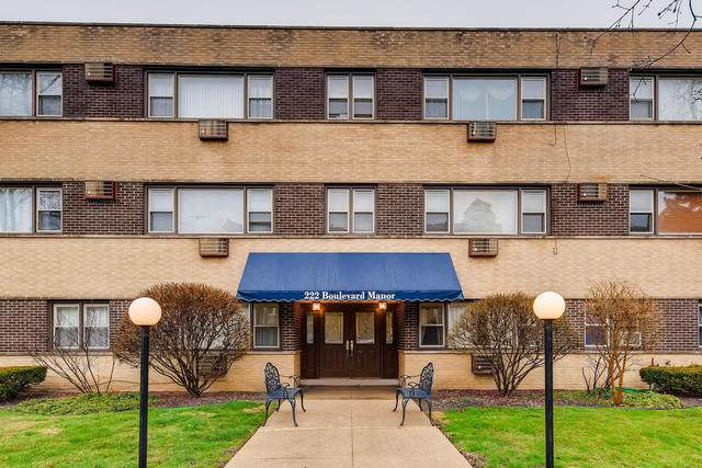 222 Washington Boulevard #205, Oak Park, IL 60302 (MLS #10673644) :: Helen Oliveri Real Estate