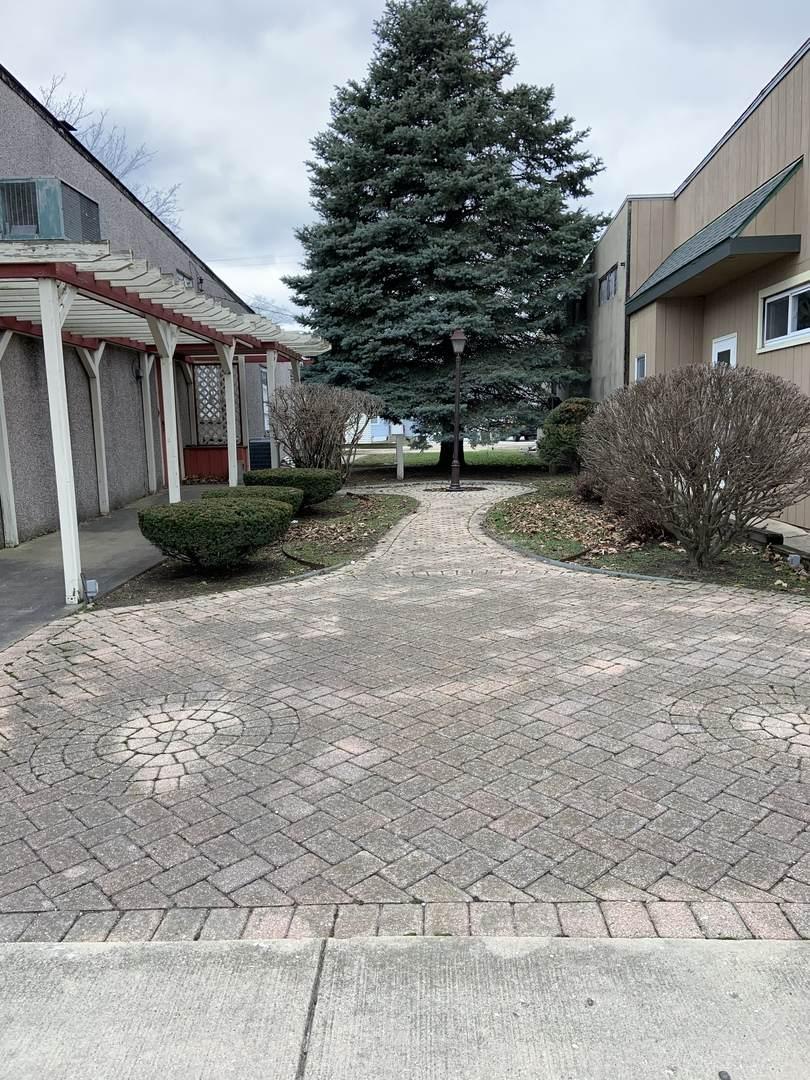 306 N Main Avenue, Ladd, IL 61329 (MLS #10674053) :: John Lyons Real Estate