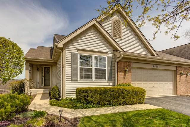 6424 Ginos Way, Fox Lake, IL 60020 (MLS #10674336) :: Littlefield Group