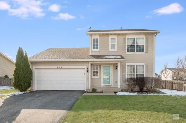 801 Grant Drive, Minooka, IL 60447 (MLS #10674337) :: Littlefield Group