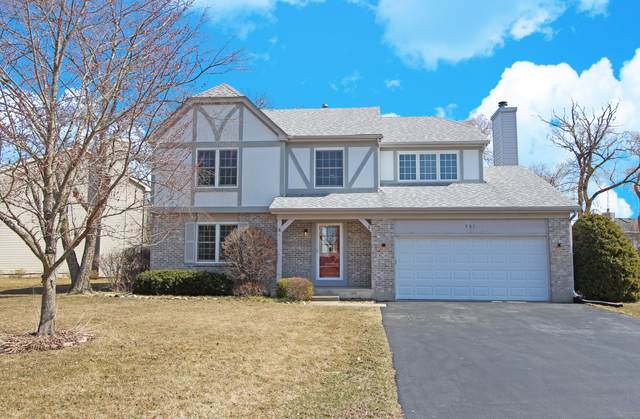 937 Manchester Road, Lake Zurich, IL 60047 (MLS #10674486) :: Ani Real Estate