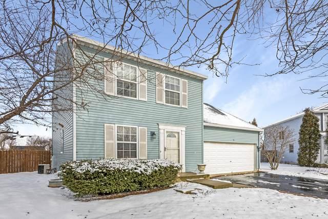 5 Diane Court, South Elgin, IL 60177 (MLS #10674958) :: Knott's Real Estate Team