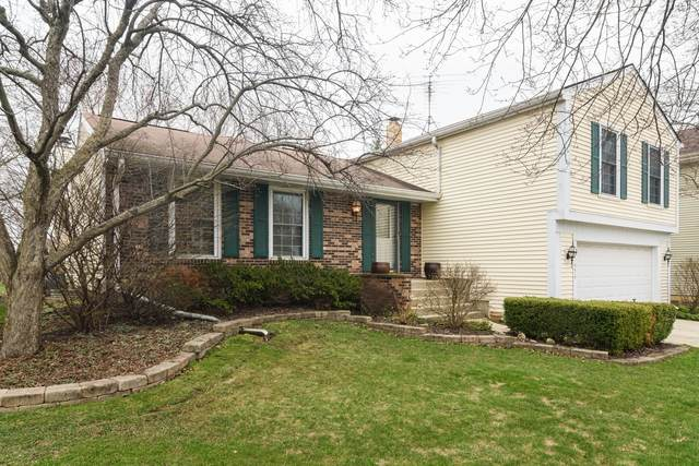 1474 Oxford Drive, Buffalo Grove, IL 60089 (MLS #10675177) :: Helen Oliveri Real Estate