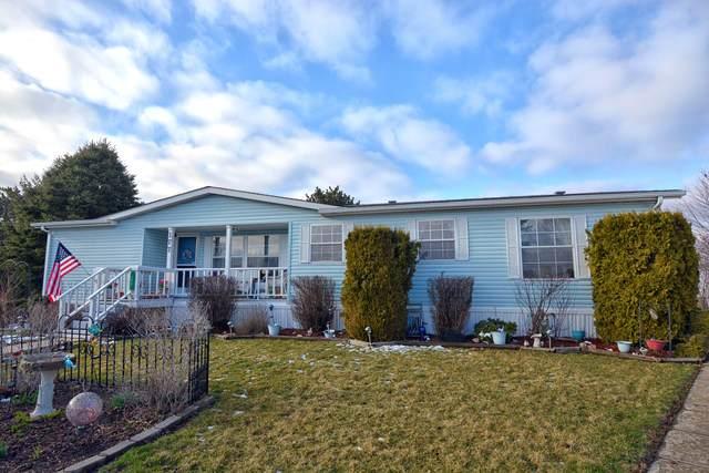 177 Jackson Court, Manteno, IL 60950 (MLS #10675344) :: Suburban Life Realty