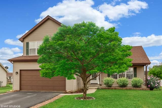 528 Chestnut Lane, Peotone, IL 60468 (MLS #10675693) :: Helen Oliveri Real Estate