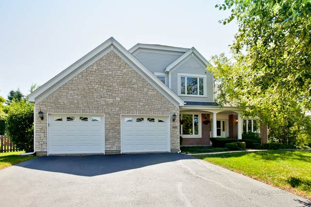 630 S Grethe Court, Lake Zurich, IL 60047 (MLS #10676299) :: Helen Oliveri Real Estate