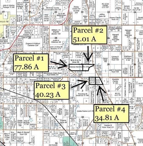 Lot 1 Green Road, Harvard, IL 60033 (MLS #10676697) :: Helen Oliveri Real Estate
