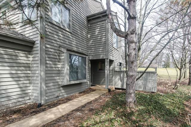 127 Waterview Court D, Barrington, IL 60010 (MLS #10676816) :: Helen Oliveri Real Estate