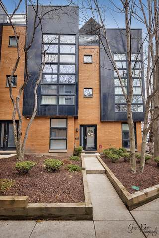 2046 W Willow Street A, Chicago, IL 60647 (MLS #10676856) :: Property Consultants Realty