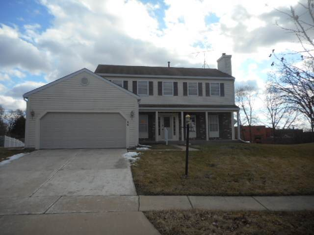 45 N Walnut Court, Streamwood, IL 60107 (MLS #10677016) :: Suburban Life Realty