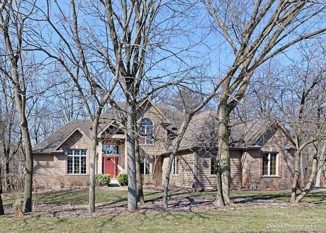617 White Oak Way, Yorkville, IL 60560 (MLS #10677065) :: Helen Oliveri Real Estate