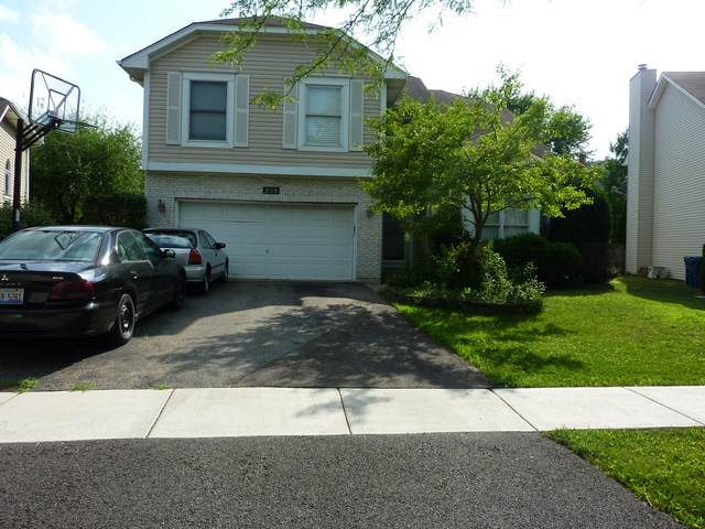 209 Windsor Drive, Bartlett, IL 60103 (MLS #10677169) :: Suburban Life Realty