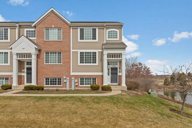 8956 Disbrow Street, Huntley, IL 60142 (MLS #10677220) :: Property Consultants Realty