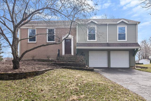 2138 Countryside Circle, Naperville, IL 60565 (MLS #10677276) :: Property Consultants Realty