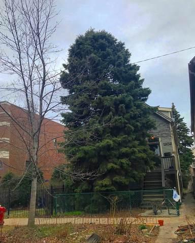 1302 W Wellington Avenue, Chicago, IL 60657 (MLS #10677502) :: Ryan Dallas Real Estate