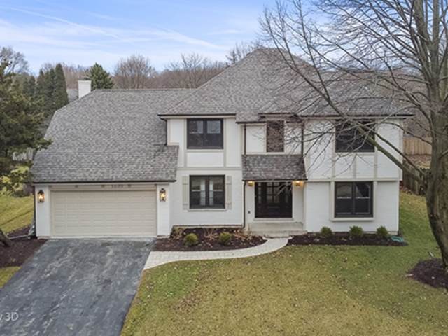 1236 Sunnybrook Drive, Naperville, IL 60540 (MLS #10677681) :: Property Consultants Realty