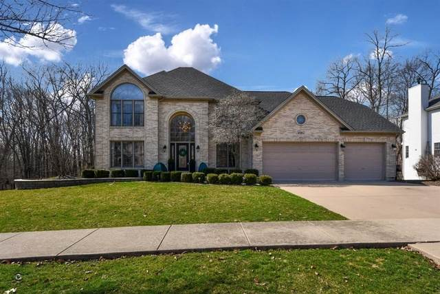16962 Arbor Creek Drive, Plainfield, IL 60586 (MLS #10677751) :: Property Consultants Realty
