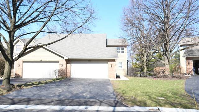 568 Shagbark Drive, Elgin, IL 60123 (MLS #10677999) :: Littlefield Group