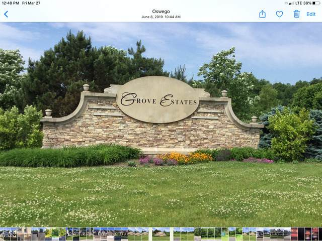 7103 Fitkins Drive, Oswego, IL 60543 (MLS #10678074) :: BN Homes Group
