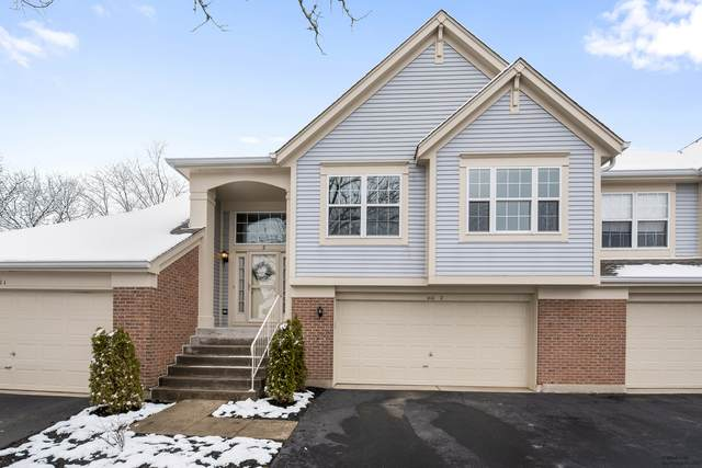 410 Cromwell Circle #2, Bartlett, IL 60103 (MLS #10678169) :: The Wexler Group at Keller Williams Preferred Realty