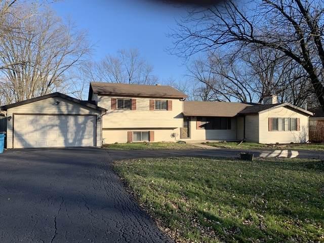 2N451 Diane Avenue, Glen Ellyn, IL 60137 (MLS #10678170) :: The Wexler Group at Keller Williams Preferred Realty